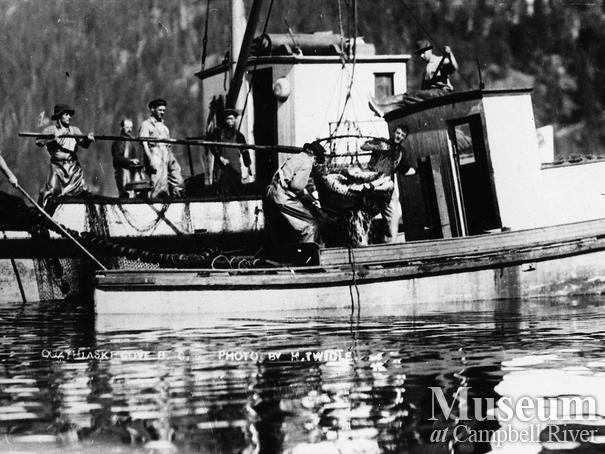 Unloading a catch of salmon to a packer