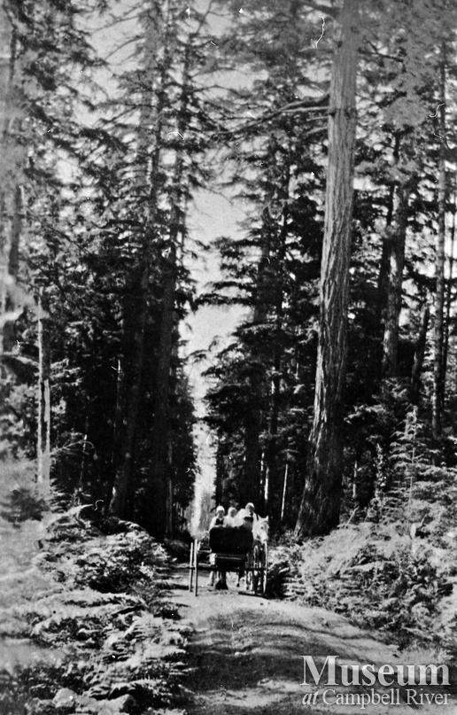 Horse and cart on dirt road, Quadra Island