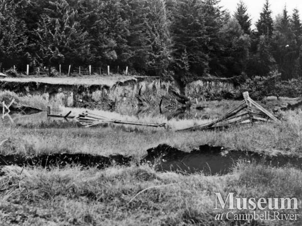 Damaged ground after 1946 earthquake, Read Island