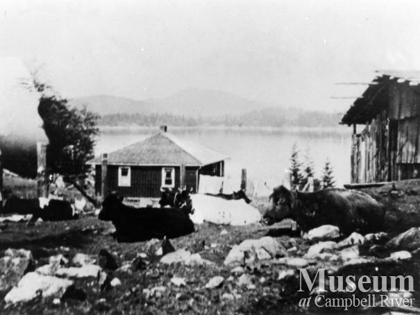 Tipton's house at Surge Narrows, Read Island