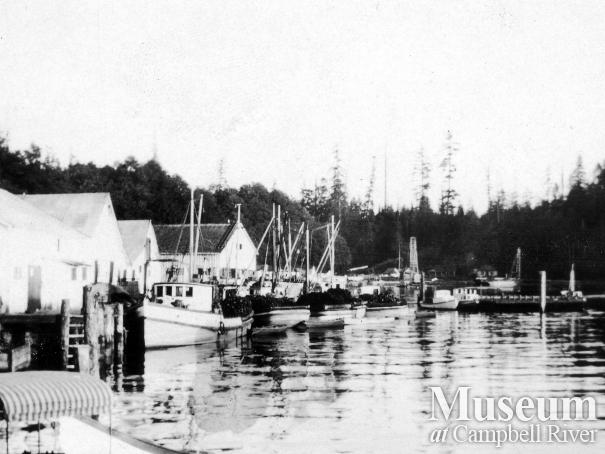 View of Seine Boat Fleet at the Quathiaski Cannery