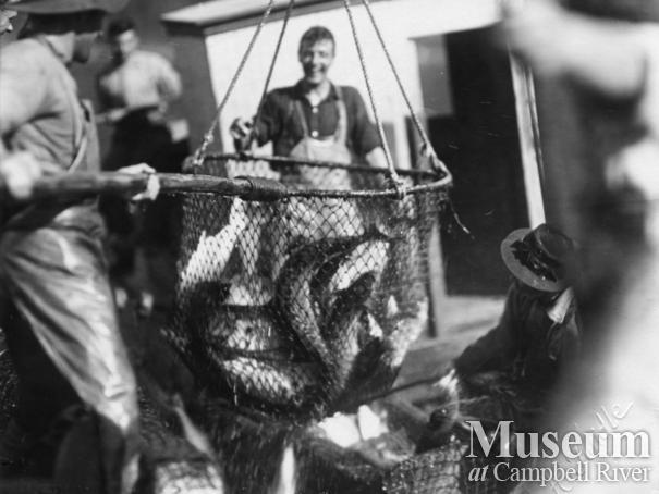 Quathiaski Canning Company seine boat crew brailing salmon
