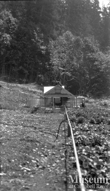 Animal cages and water line Schnarr homestead, Bute Inlet,1920's