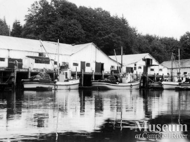View of the Quathiaski Canning Co. seine boats tied up along side cannery