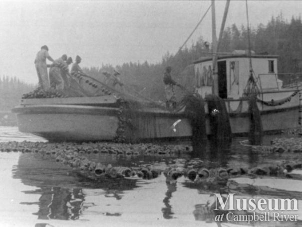 Quathiaski Canning Company seine boat