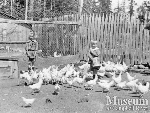 Children with the chickens at farm at Whaletown, Cortes Island