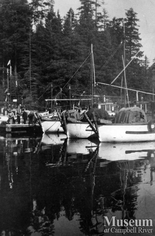 Gillnet Boat fleet at Deepwater Bay, Quadra Island, 1949