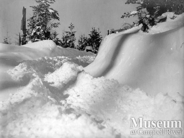 Snowfall near the Twidle home, Granite Bay, Quadra Island