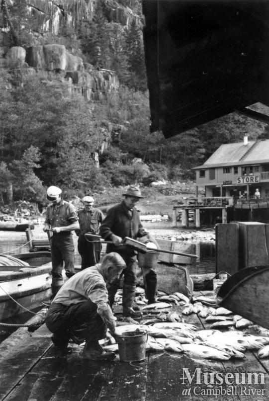 Gillnetter's catch at dock at Stuart Island
